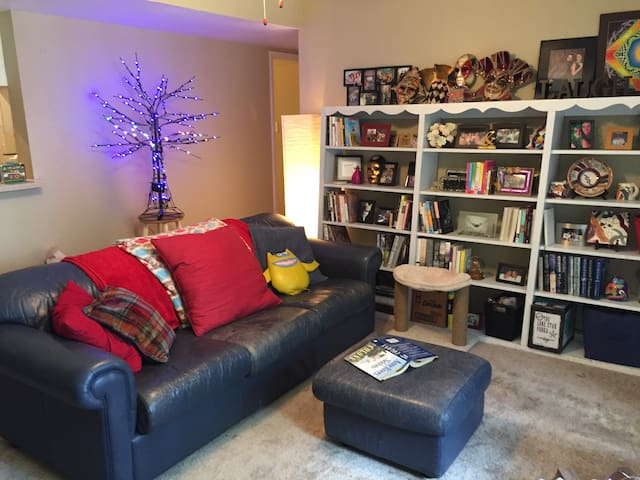 Book Lover's Hideaway, NASA - Friendswood - Leilighet