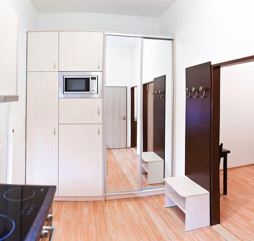 Cosy flat in the centre of Brno - Brno - Apartmen
