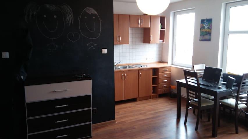 Cozy Apartment in the City Center of Bydgoszcz :) - Bydgoszcz - Daire