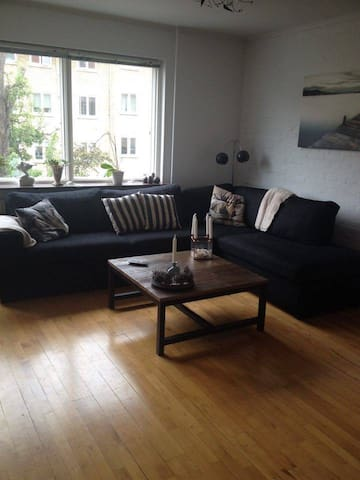 Big 1 bedroom apartment. Just above Copenhagen. - Søborg - Apartament