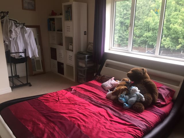Spacious double with lovely view in Buckingham - Buckingham