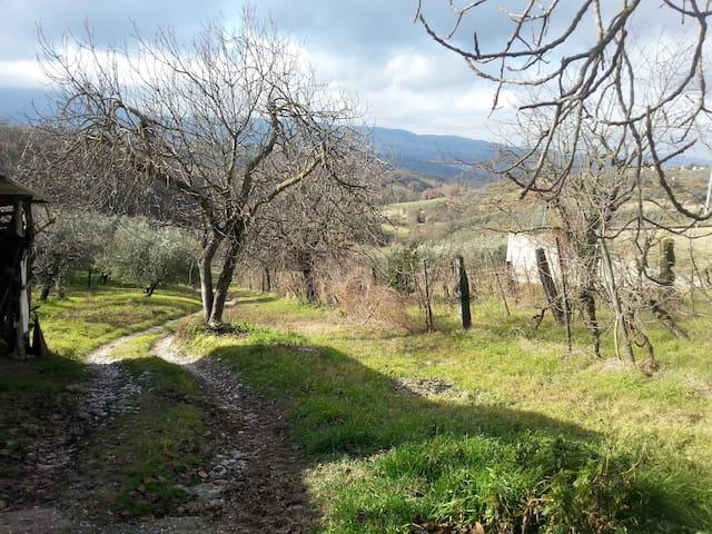 Casa Vacanze relax in Umbria - Stroncone - Leilighet
