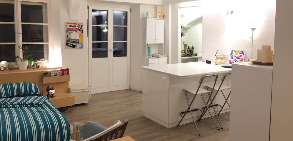 Tolles 1-Zimmer-Apartment mitten in der Altstadt - Ingolstadt