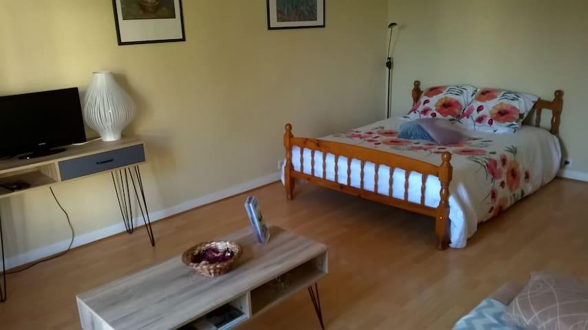 Appartement calme à Saumur - Saumur
