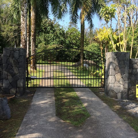 Tropical Forest Getaway - Kurtistown - Daire