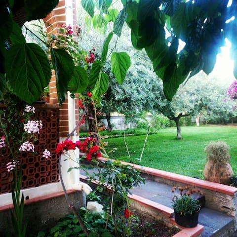 La Casa dell'antiquario - Muscianò-cupparo - Villa