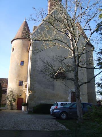 Trés belles chambres dans un château du XVIe - Thevet-Saint-Julien - Castillo