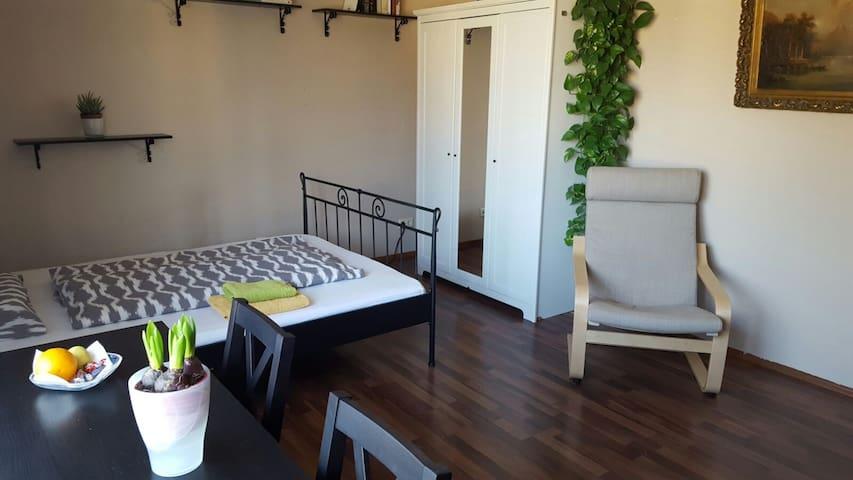 Räumiges Privatzimmer, zentrumnah - 波恩 - 公寓