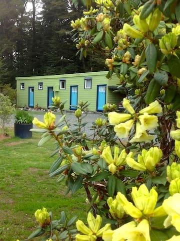C1 POSSUMLODGE MOTELS & HOLIDAY PARK - Manapouri - Houten huisje