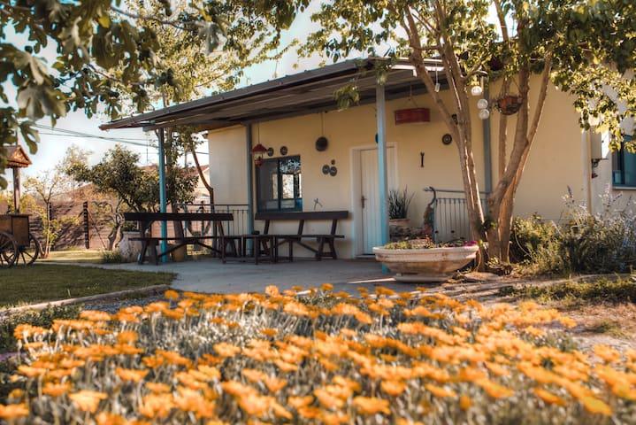La Finka House - Tel Adashim - Casa de vacaciones