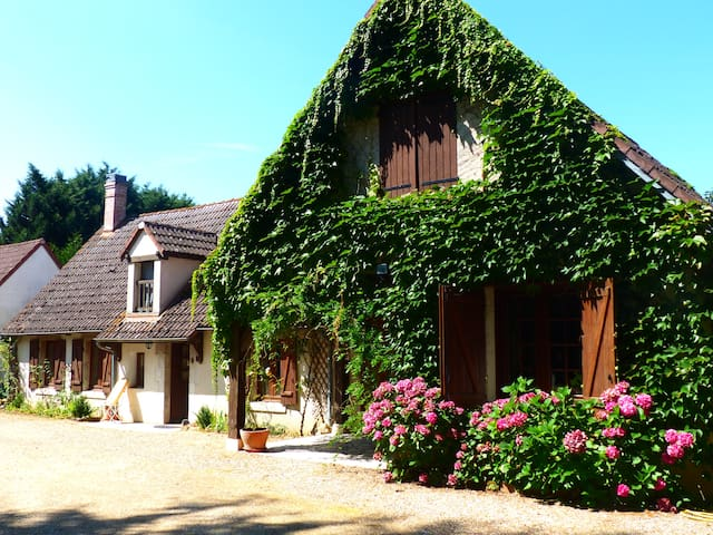 Le Jardin des Ocreries - Saint-Georges-sur-la-Prée - Oda + Kahvaltı