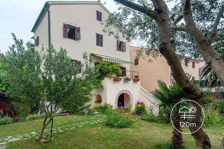 Villa Lana - Osor - Dům