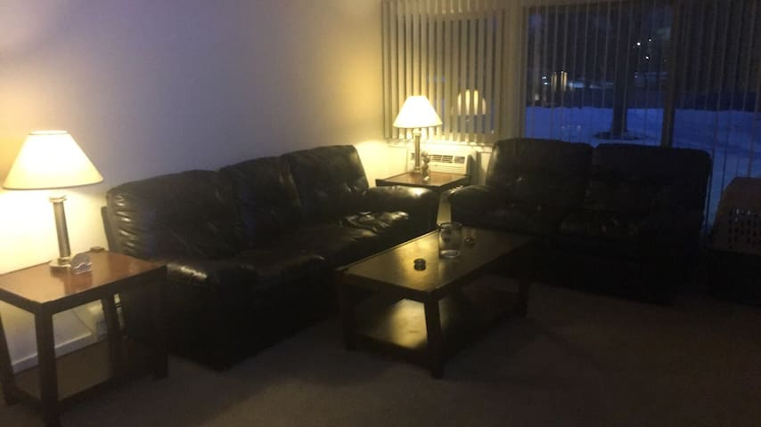 Roommate Leaving, need new or guest - Schaumburg - Byt