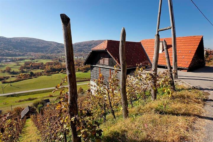 Vineyard cottage Ludvikov hram - Dvor - Ev