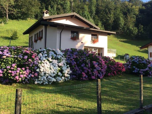 Casa vacanze immersa nel verde - Maggio - Leilighet