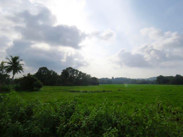 Shanti Sharan- Sanctuary of peace, Kerala - Neervilakom