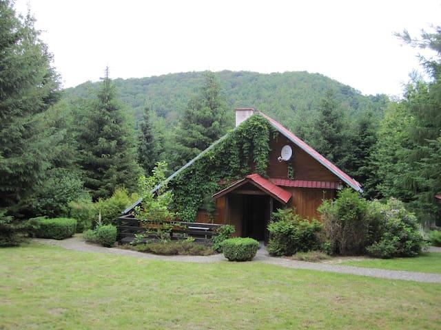House on the Hill - Bystrzyca Górna - Chalet