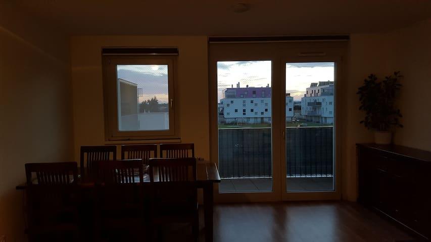 Vienna Apartement in green Area - Wien