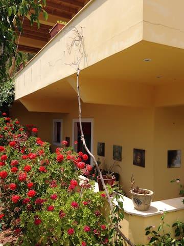 Complete apartment Dakanari Mirtos. - Lasithi - Appartement