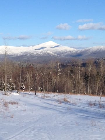 Peaceful Adirondack Getaway - Bloomingdale - Appartement