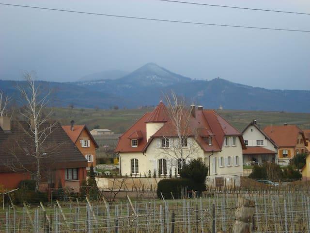 """Gîte spacieux """" Le Castel"""" - Bennwihr - Huis"""