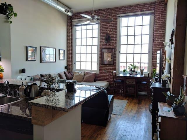 Beautiful Quiet Dog-Friendly Downtown Condo - Roanoke - Lägenhet