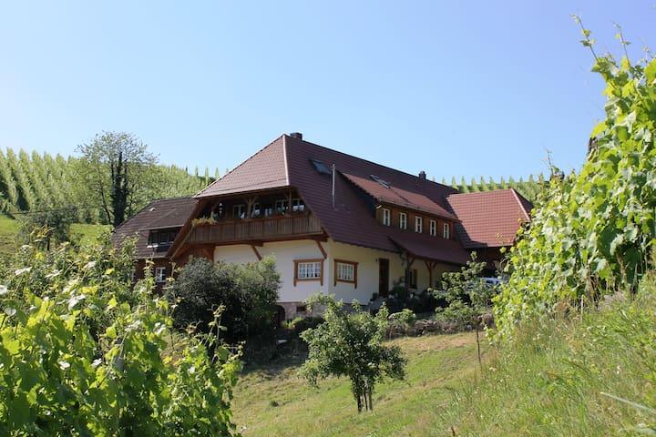 Winzerhof Armbruster - Gengenbach - Maison