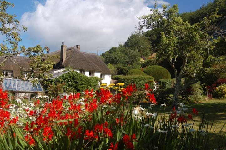 Devon longhouse with private pool close to the sea - Newton Abbot - Haus