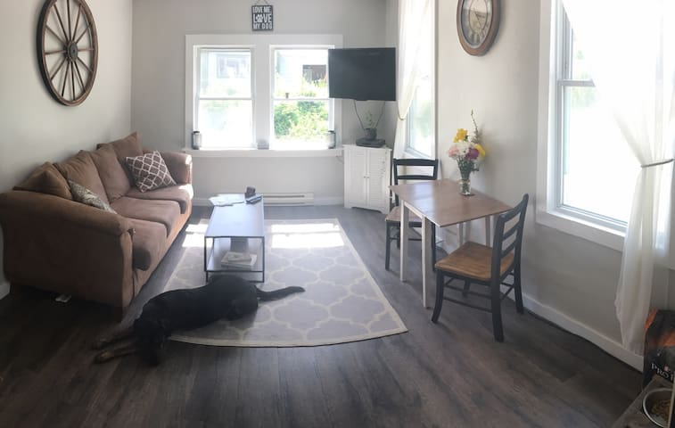 Fully furnished 1 bedroom wifi - Saranac Lake - Appartement