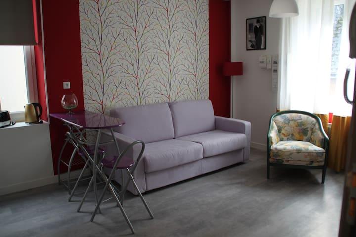 studio spacieux au coeur de montbazon - Montbazon - Daire