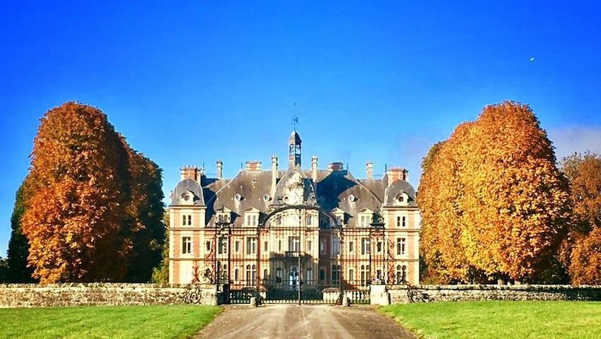 Lavish Chateau Apartment Near Paris - Ocquerre - Lägenhet