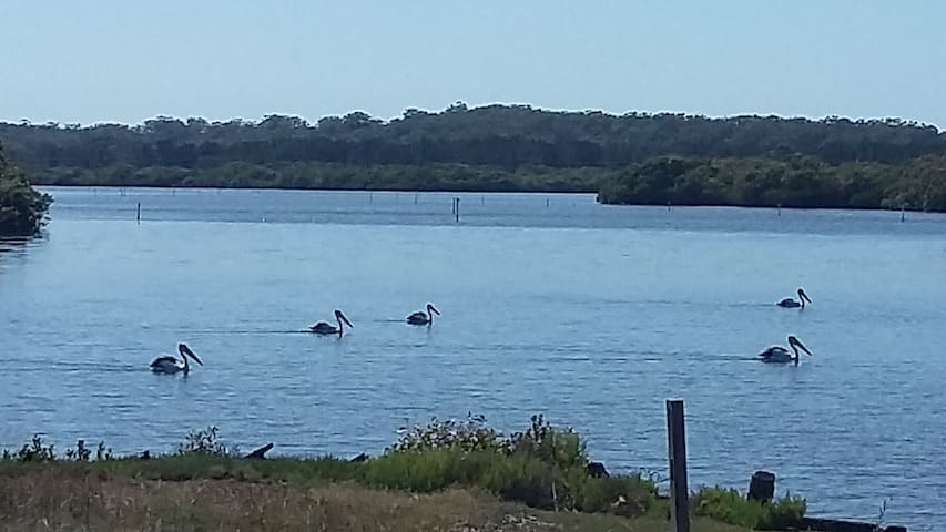 Pelicans Rest- Single - Salt Ash - Bed & Breakfast