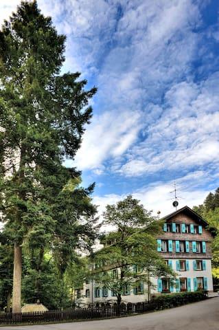 Steinabad - Appartement Belchen - Bonndorf - Apartamento