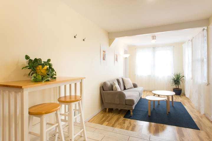 Spacious, Comfortable 2 Bedroom Apt Near South End - Boston - Lejlighed