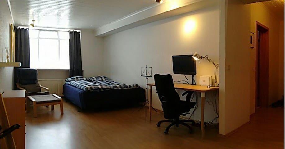 Studio apartment downtown Reykjavik - Reykjavik - Leilighet