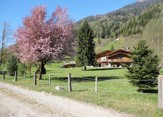 Alpine Chalet Maso Brenta - Caderzone - Alpstuga