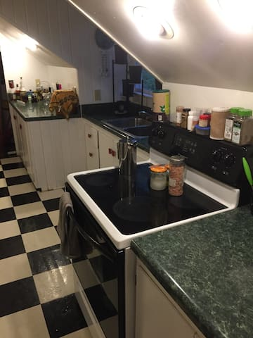 Spacious 1 bedroom less than a mile from Main St - Greenville - Lägenhet