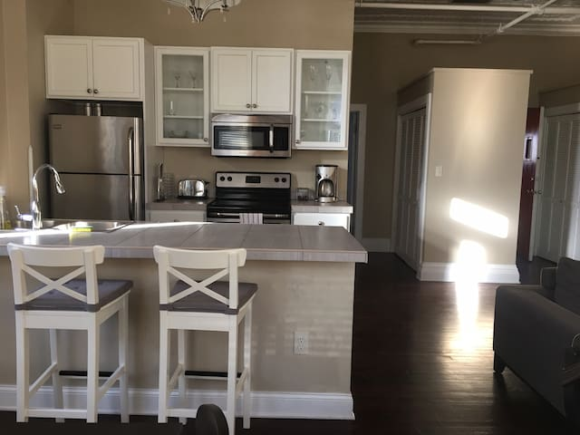 Large Lofty 1 Bdr in Center Sq. w/ Parking - Albany - Apartament
