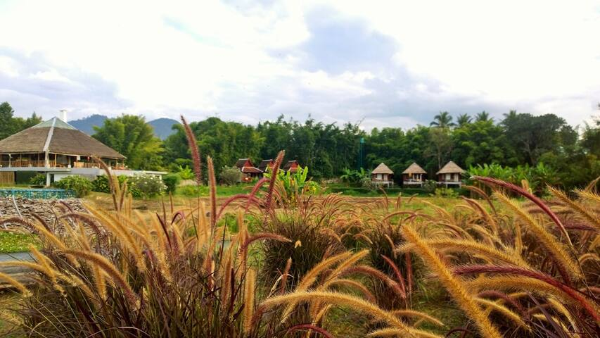 River Pai Thai Teak Villa - Tambon Wiang Nuea - House