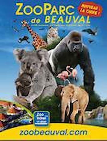 Maison  à 20 mns du Zoo de Beauval - Chémery - Hus