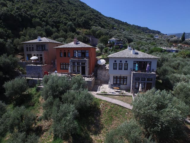 Damouchari Apartment by the beach of Damouchari - Mouresi - 公寓