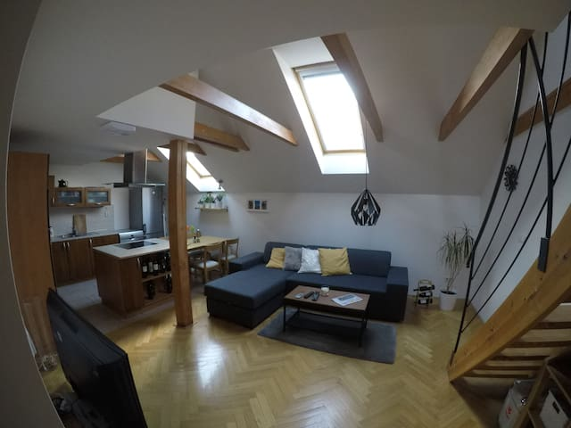 Sunny flat in the best location - Praha - Appartement