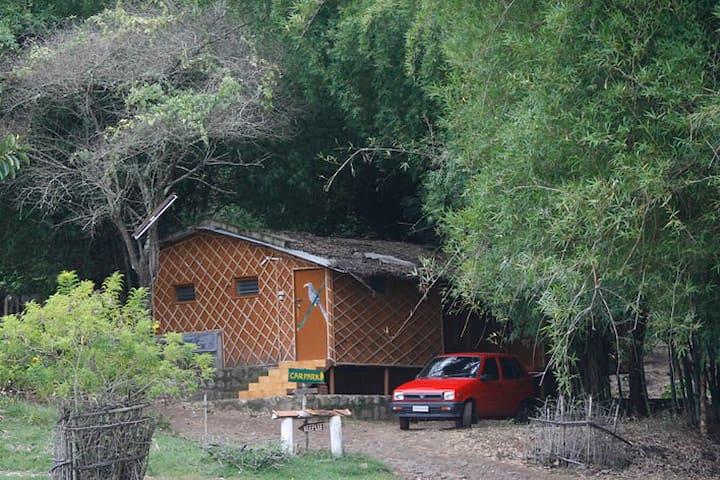 Bamboo Cottage - Masinagudi - Leilighet