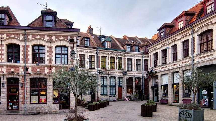 Appart lille, idéal week end! plein centre ville - Lille - Huoneisto
