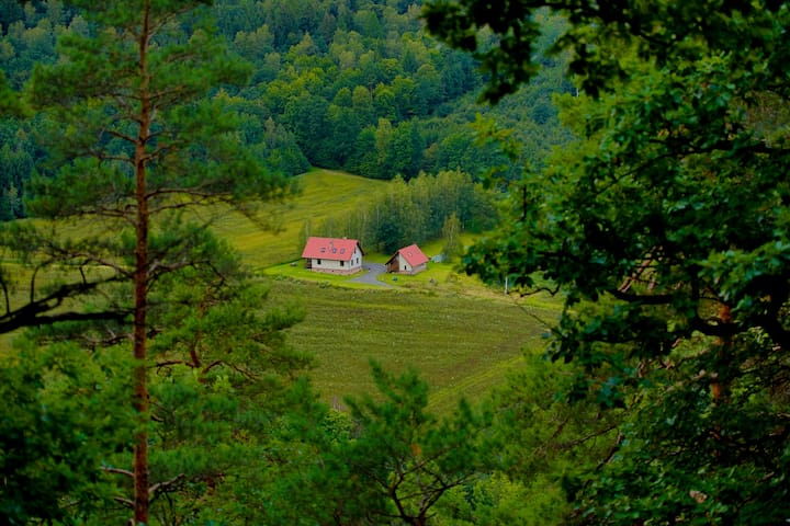 Agatowe Piekielko, cały dom - cisza,spokój,las - Nowy Kościół - Huis