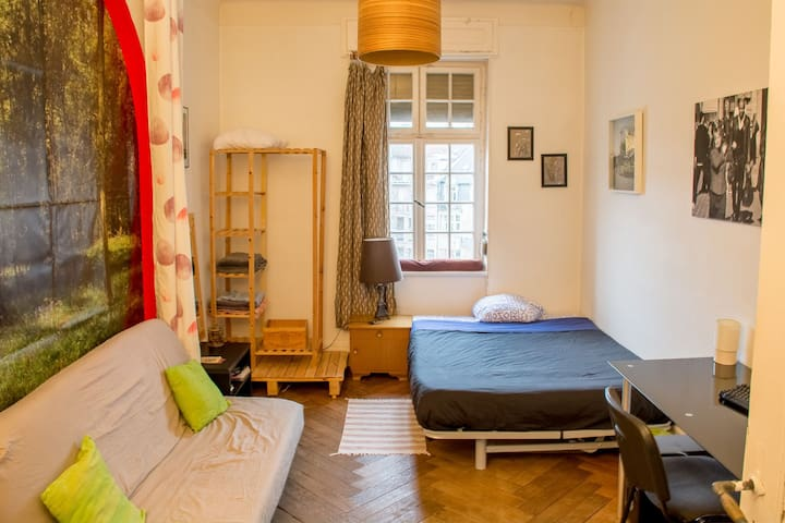 Furnished room near down town and train station - Metz - Apartemen