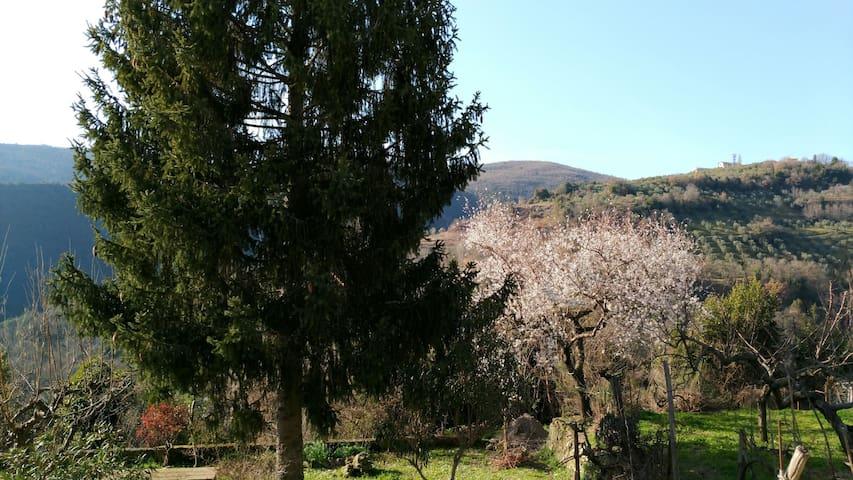 Relax tra le verdi colline sabine, un'ora da Roma - Poggio San Lorenzo - Ev