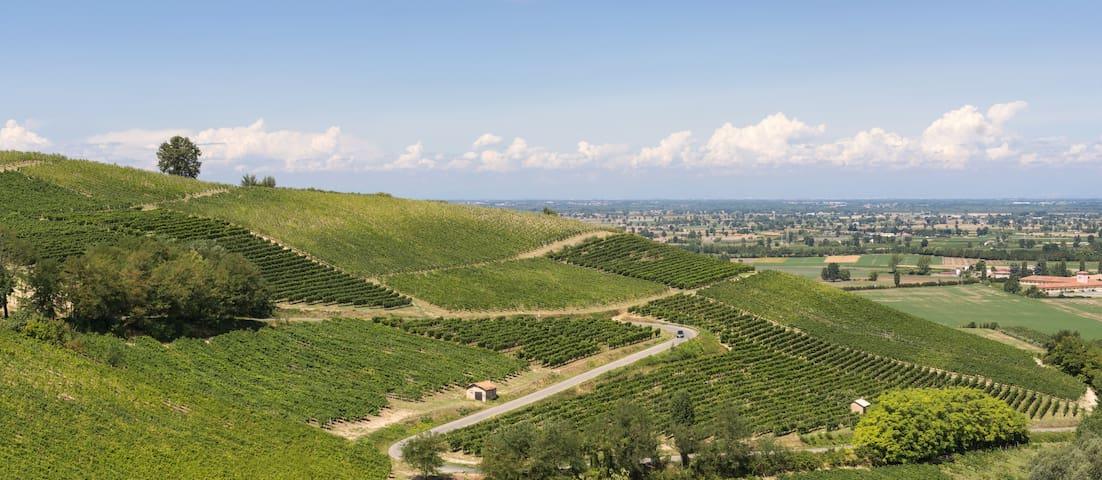 Stunning vineyards, hills near Milan - Salice Terme - Huis