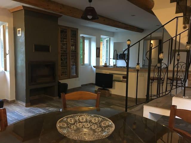 Le Mas Sylva - Saint-Jean-du-Pin - Apartamento