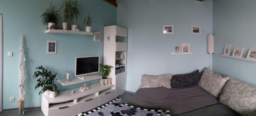 Cozy apartment near Brno-the exhibition area - Rosice - Hus